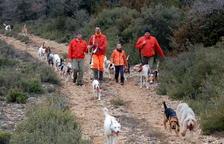 Els caçadors de l'Ebre segueixen sense permís per caçar la polla d'aigua