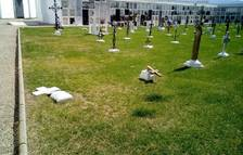 Profanen tres tombes del cementiri de Móra la Nova