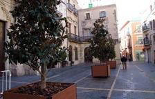 El Vendrell recupera l'arbrat de la plaça Vella amb un sistema de torretes mòbils
