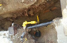 Els veïns de Mas Abelló alerten dels perills de l'arbrat en els seus habitatges