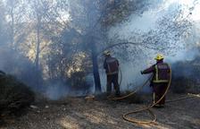 Un petit incendi afecta una zona de pins a Sant Pere i Sant Pau