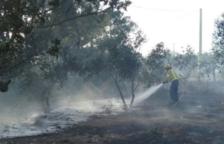 Dos incendis de vegetació cremen a Rasquera i a l'Ametlla de Mar