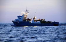 Els tonyinaires de l'Ebre denuncien que Canàries amaga part de la pesca