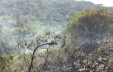 L'incendi de la Selva del Camp crema més de 7.000 metres quadrats