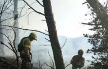 Dos incendis cremen vegetació i canyes a Alforja