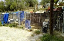 Calafell revisarà les condicions de totes les gosseres per evitar nous casos d'abandonament d'animals