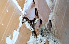 El carrer Goya, «infestat» de paneroles per segon estiu consecutiu