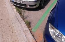 Herbes a l'asfalt de Maria Cristina