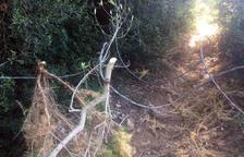 Apareix un perillós cable en un camí de Calafell freqüentat per ciclistes