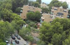 Les molèsties pel tall de Carles Buïgas incrementen durant l'agost