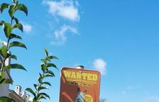 Els veïns reclamen papereres pels excrements de gos a Vilafortuny