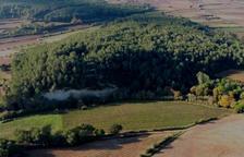 Comencen les excavacions arqueològiques a la part de l'Arboç de la Timba de Santa Bàrbara
