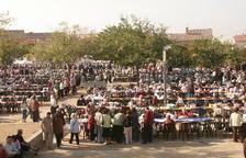 Més de 1.500 puntaires es reuniran a l'Arboç en la XXXI Diada de la Puntaire de Catalunya