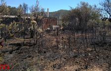 Un incendi crema 5.000 metres quadrats de vegetació a Vandellòs