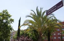 L'Escola Sant Bernat Calbó tanca quatre dècades de feina per posar la 'v' al nom