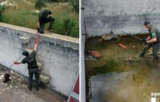 Rescaten tres teixons que havien caigut a una bassa de reg del Parc Samà