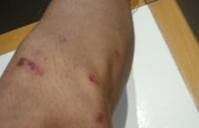 Denuncien els vigilants de seguretat de l'Estació per agressions a un jove