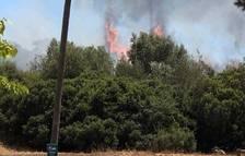 Els petards provoquen els primers incendis al Camp de Tarragona