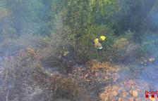 Cremen 3.000 metres quadrats a Alcover