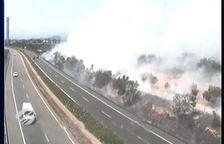 Crema un camp de conreu proper a l'AP-7 entre l'Ampolla i Tortosa