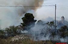 Incendi forestal a Alcanar