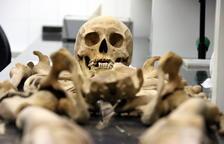 Identifiquen per primer cop una víctima de les fosses de la Guerra Civil a través del banc d'ADN dels familiars