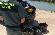 Detingut per intentar subornar amb 200 euros un policia per evitar una sanció de pesca