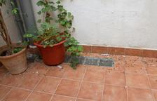 Queixes per la presència de coloms en un edifici abandonat del centre de Reus