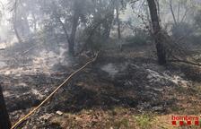 Un incendi de vegetació a Llorac mobilitza un helicòpter i cinc dotacions terrestres