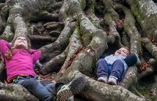 Una excursió per conèixer un arbre de 250 anys al Parc Natural dels Ports