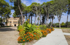 Vila-seca, capital de les viles florides