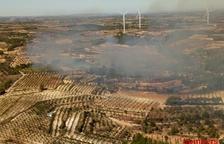 Un incendi de vegetació crema gairebé 4 hectàrees a Gandesa