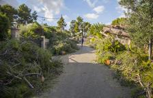 «El Consell Comarcal no ha respost, 48 hores després del tornado»