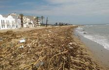 La platja de Sant Salvador del Vendrell acumula restes de la riera