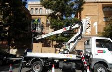 Las nuevas alarmas para asustar a estorninos en Tarragona sonarán durante menos rato