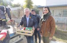 Cáritas i Eluzai reben més de 800 quilos d'aliments recollits al Parc de Nadal