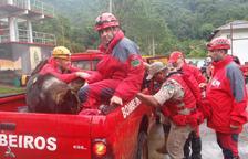 L'ONG K-9 de Creixell participa en el rescat de Minas Gerais