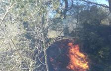 Cremen 5.000 metres quadrats de conreus abandonats al Coll de l'Alba