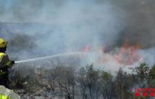 Extingit un incendi forestal que ha cremat la part baixa del Montsianell, a Amposta