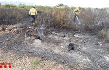 Un incendio quema 8.000 metros cuadrados vegetación cerca de la TP-3311 en Ulldecona