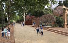 Aprovats definitivament els projectes per millorar el passeig de la Boca de la Mina de Reus