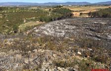 Extinguido el incendio forestal de Montferri
