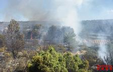 Un incendio de vegetación en Batea moviliza seis dotaciones de Bombers