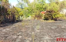 Un incendi crema 6.511 metres quadrats de matolls a Horta de Sant Joan