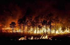 Els Bombers encara no tenen encerclat l'incendi de Ribera d'Ebre