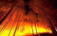 Agents Rurals estimen en 5.700 hectàrees el perímetre actual de l'incendi de la Ribera d'Ebre
