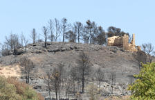 Una vintena de dotacions de Bombers revisen l'incendi de la Ribera d'Ebre per evitar revifades