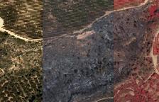 L'ICGC publica imatges aèries de l'àrea cremada per l'incendi de la Ribera d'Ebre