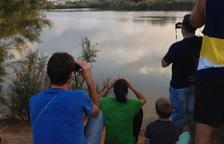 Ja es pot visitar l'espai protegit de la Sèquia Major de Vila-seca