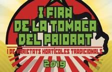 Falsete acogerá la primera edición de la Fira de la Tomaca del Priorat el 24 de agosto